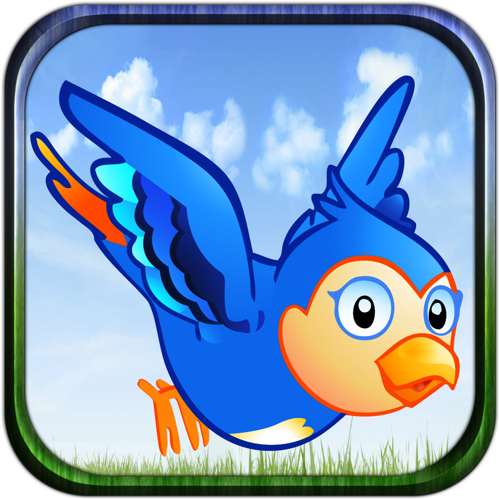 Bird Control - Spread Your Wings And Fly!